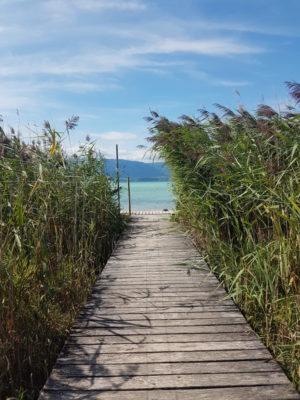 Sortie lac Genève été · Terrain d'aventures Lancy-Voirets · TALV